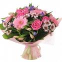Цветы Любимым Горшечные и Срезанные