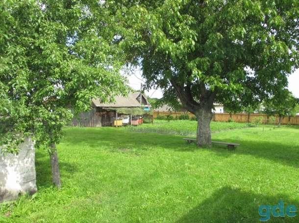 Дом с участком на р. Припять, фотография 4