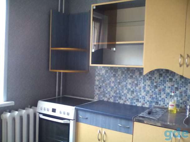 Сдам 1-комнатную квартиру в молодежном центре Витебска возле Грина, фотография 1