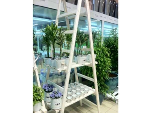 Декоративная лестница-стеллаж, фотография 1