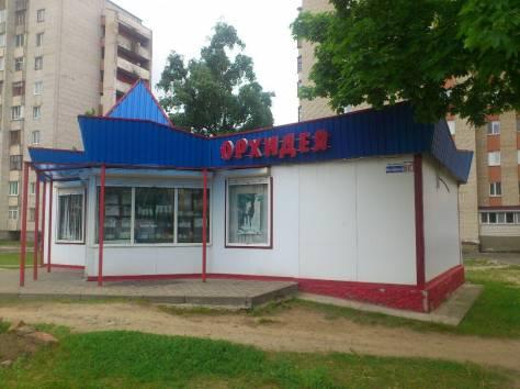 Продаю магазин, фотография 2