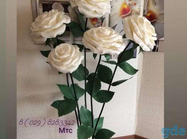Роза, фотография 3