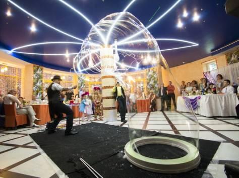 Шоу гигантских мыльных пузырей на свадьбу, фотография 8