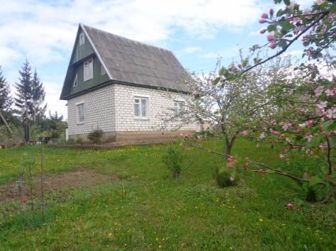 продам дом в городе Браслав, фотография 6