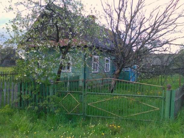 Продам любимую деревню! Дрогичинский район, д.  Занивье., фотография 6