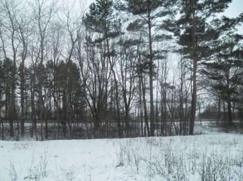 Продаётся дом с участком на берегу озера Нарочь , фотография 8