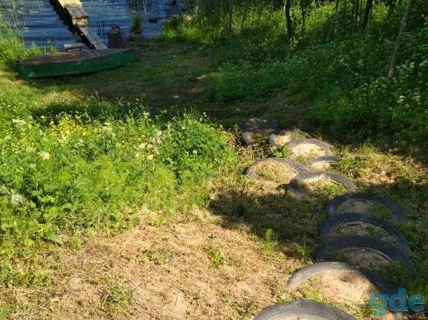 Продам дом на берегу озера в Браславском районе, 58,6, фотография 5