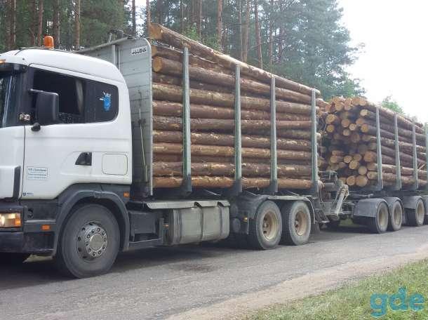Услуги лесовозов Scania, фотография 1