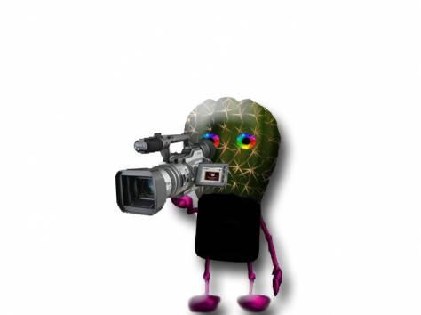 Видеосъёмка, фотография 1