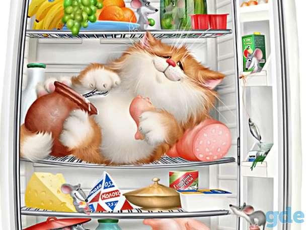 Ремонт холодильников Полоцк новополоцк, фотография 1