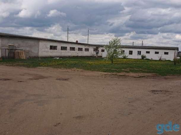 Аренда производственного помещения г. Жодино., фотография 1