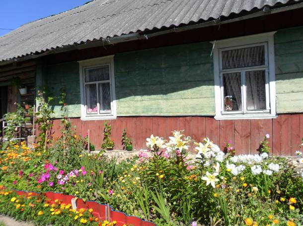 дача не далеко от озера нарочь.сад, д.пасынки , фотография 1