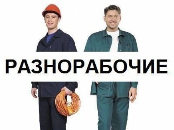 Работа грузчиком,разнорабочим в Санкт-Петербурге, фотография 1