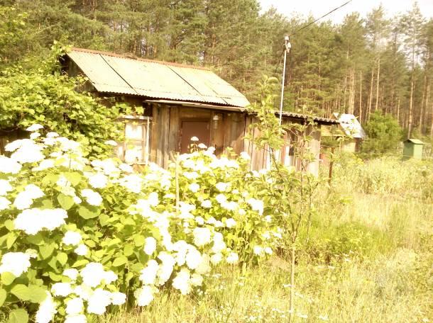 Летний домик с участком., фотография 2