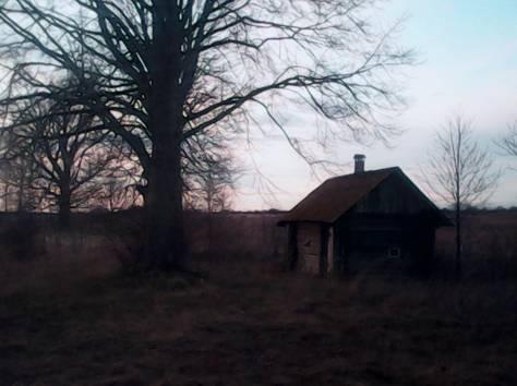 Домик у леса, фотография 1