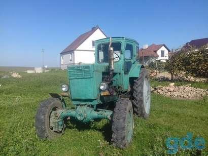 Трактор Т-40АМ, фотография 2