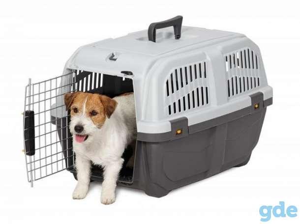 Переноски для животных напрокат, фотография 2