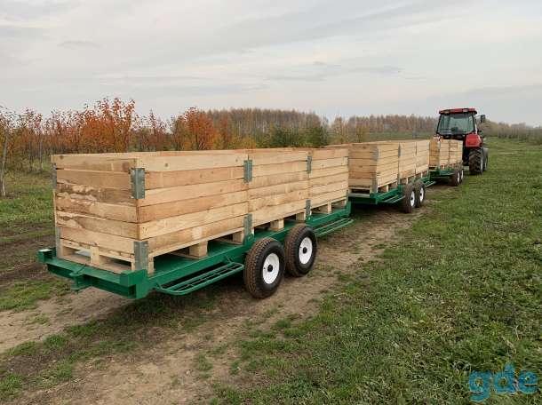 Контейнеры 1.2 x 1 x 0.8 м Для Хранения Овощей и Фруктов Оптом., фотография 7