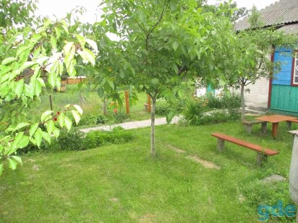 Дом с участком на р. Припять, фотография 6