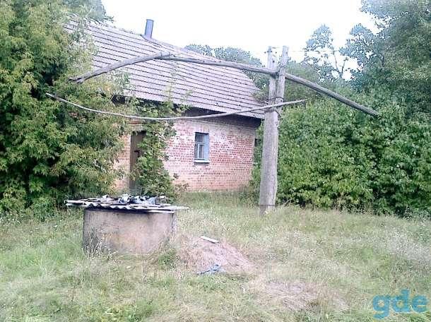 дом в деревне, Брестская обл.,Ивановский Молодово, фотография 6
