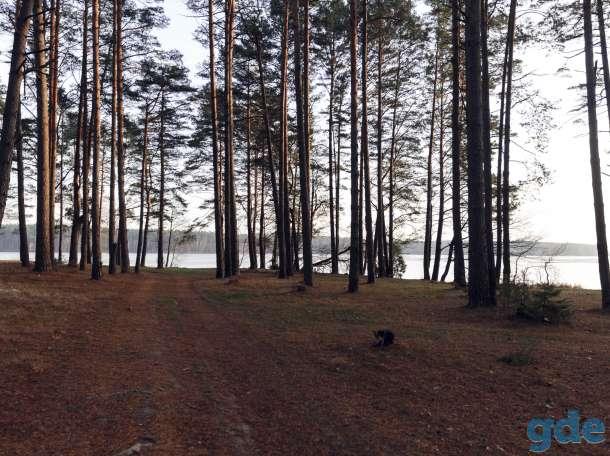 Продам земельный участок со строениями в живописном месте на берегу озера!, фотография 4