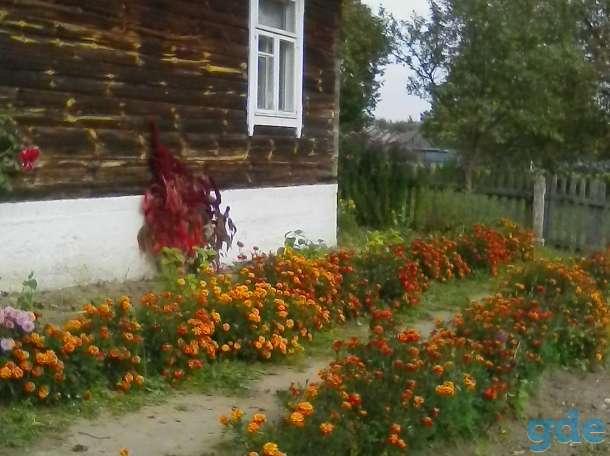 Дом Гродненская обл Дятловский р агр Роготно, фотография 7