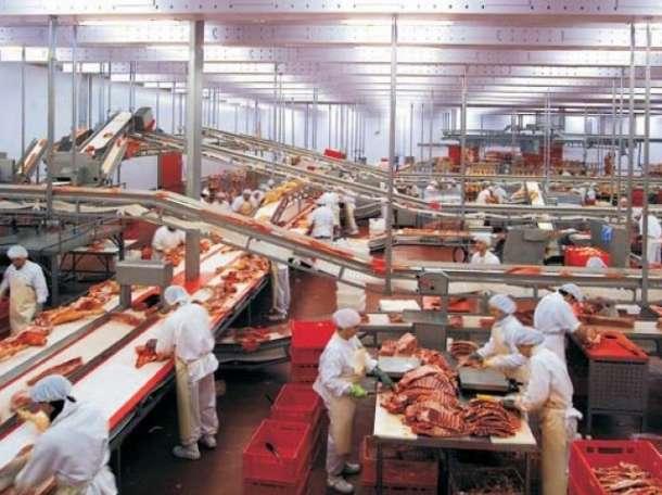 Требуются рабочие на мясокомбинат, фотография 1