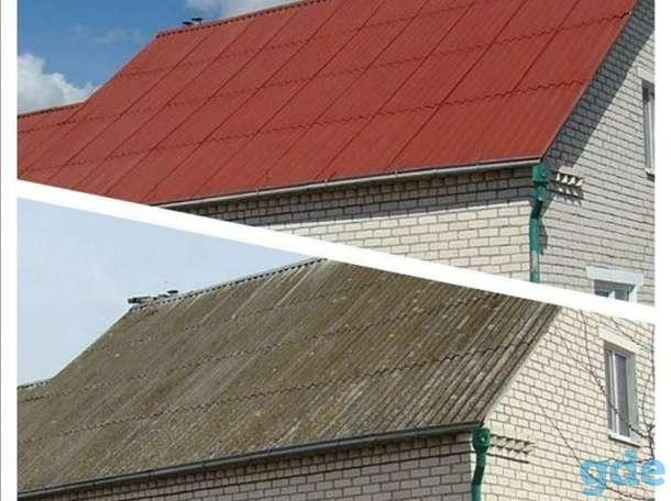 Очистка крыши от мха и грязи, покраска кровли., фотография 2
