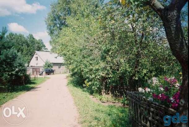 продам деревянный дом, фотография 6