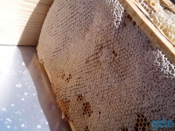 Мёд оптом, фотография 2