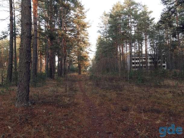 Продам земельный участок со строениями в живописном месте на берегу озера!, фотография 6