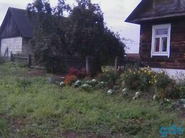 Продам дом в агрогородке Роготно, фотография 3