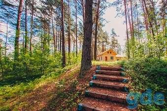 База отдыза, Витебская область, район, Гомельский с/с, 0,4км от деревни Далецкие, фотография 5