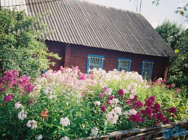 продам деревянный дом, фотография 1